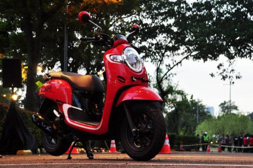 Rental Scoopy Di Bali 2019