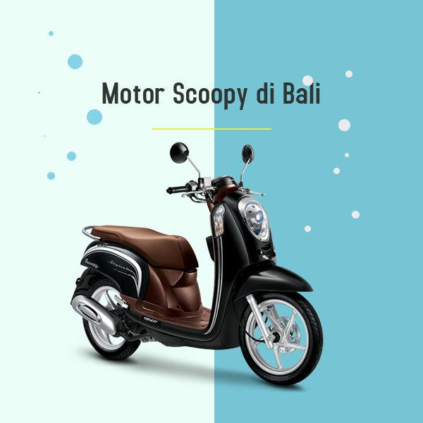 Motor Scoopy di Bali